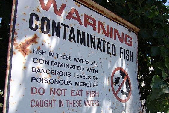 fish consumption warning sign