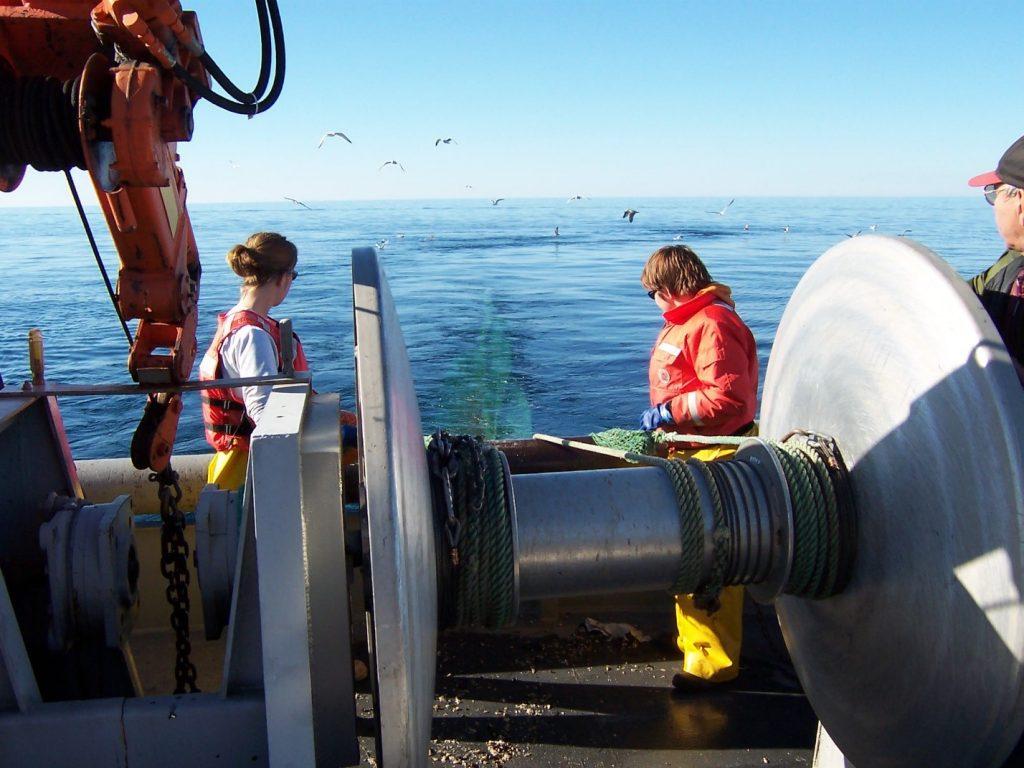alewives annual bottom trawl sampling