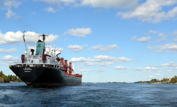 A ship on the St. Lawrence Seaway. Credit: K. Mukherjee.
