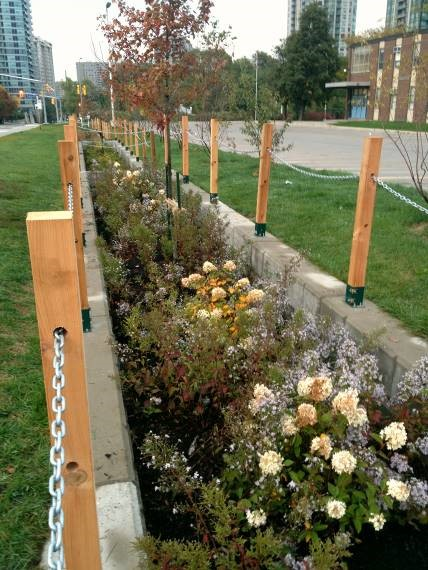This green infrastructure project is located on school property and treats roadside runoff.  Monitoring of this site showed a 70 percent reduction in nutrient loadings. Credit: CVC