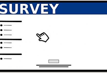 Graphic of a generic survey