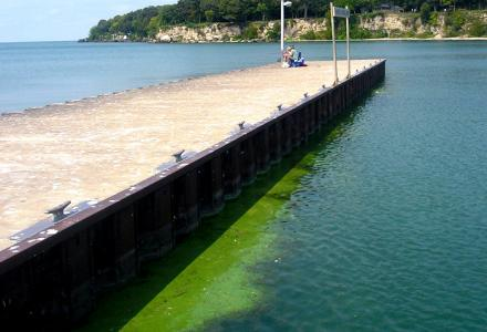 Algal blooms have been a problem on Lake Erie for years.