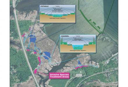 Braddock Bay: A Focus for Great Lakes Restoration