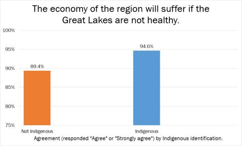 economy indigenous