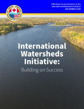 Cover image of the IWI's Fifth Report to Governments