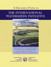 Cover image of the IWI's Second Report to Governments