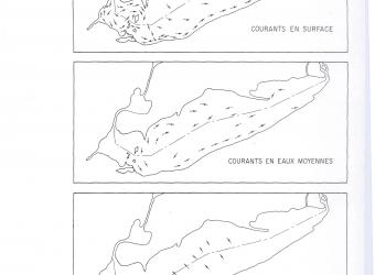 Dominant Movements of Lake Erie Water - Figure 3 - 1970-01-01