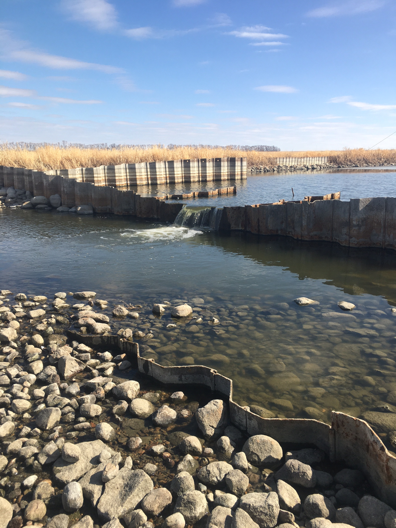 Souris River Flow at Westhope
